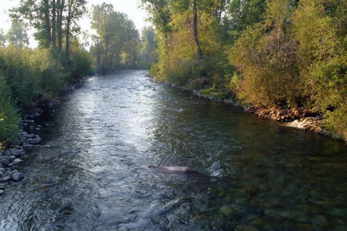 The Big Wood River.