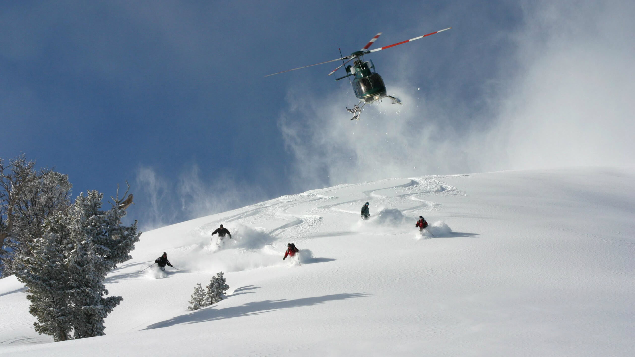 schweitzer helicopter with Pushing The Limits With Heli Skiing on 39 as well Super Puma Display Team likewise Manchester Helicopter Flight moreover Watch further Socata Tbm 700c2 Specs And Description.