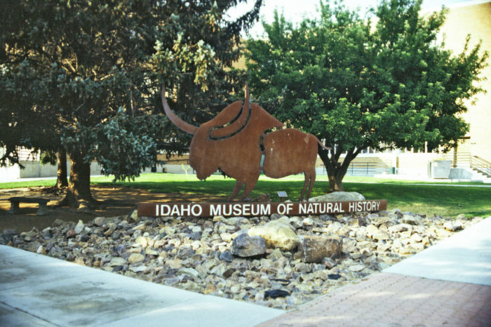 Idaho Museum Of Natural History Hours