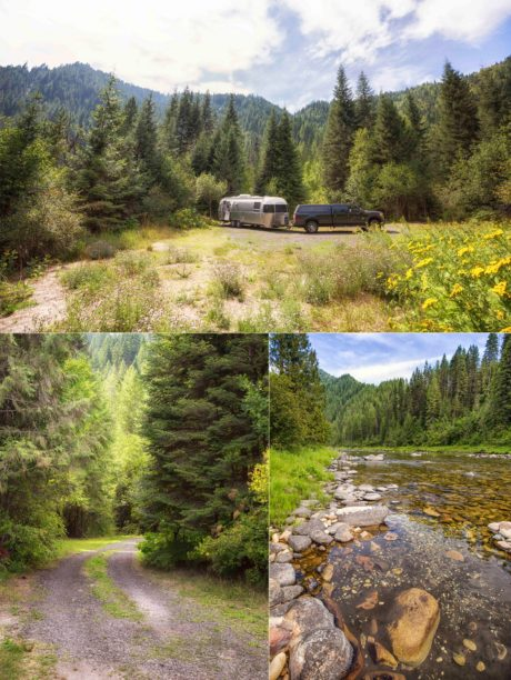 Collage: Airstream in the distance, river, winding forest road.