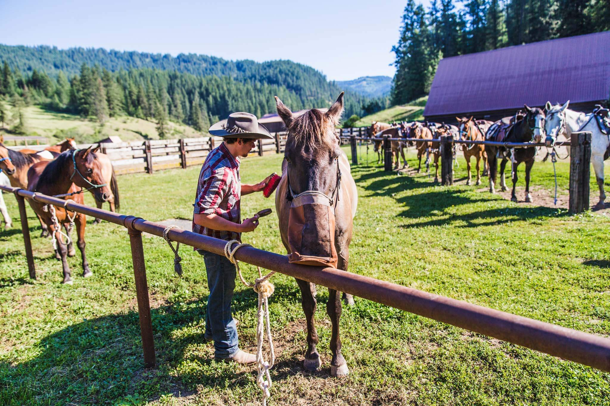 mountain ranch girls Mountain meadow uniquely located on a 900-acre ranch north of lake tahoe, campers ages 7 to 16 can choose from a variety of activities daily, including an extensive high ropes course.