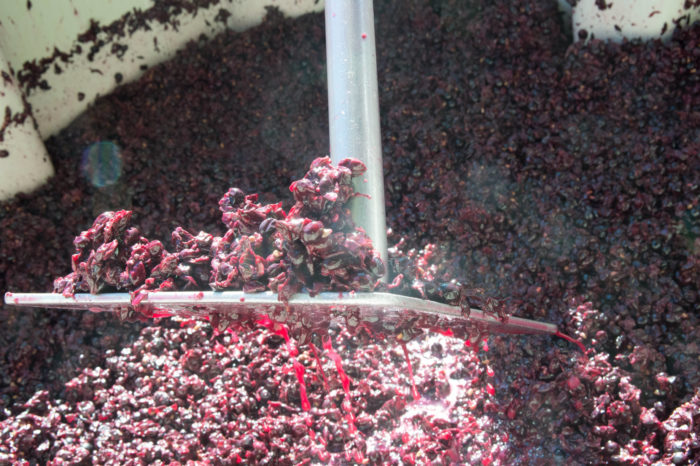 The fermenting process underway at Coeur d'Alene Cellars.