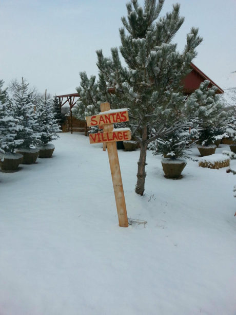 Plan a visit to Santa's Village about the Thunder Mountain Line.
