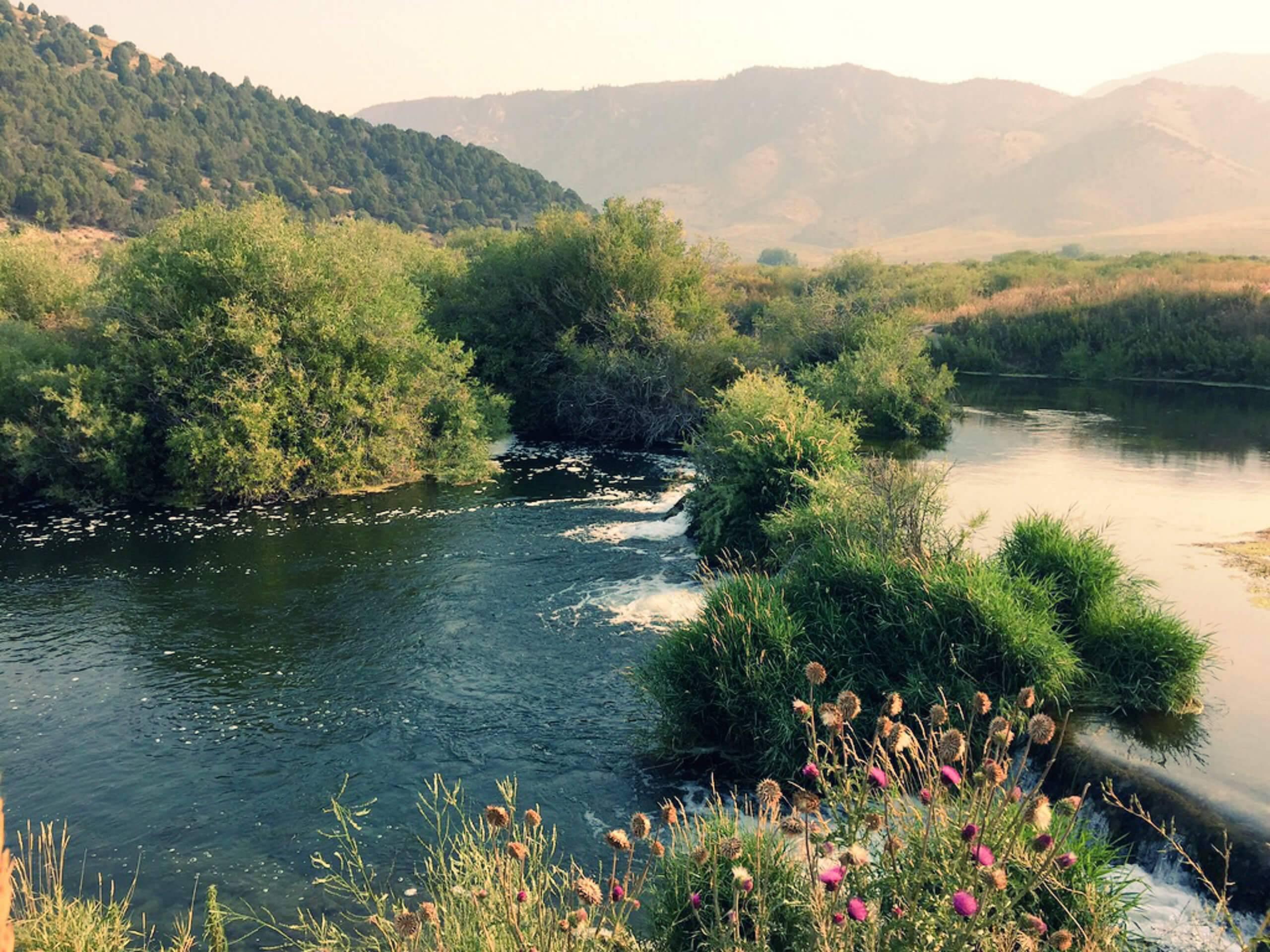 Idaho fly fishing guides for Fishing license idaho