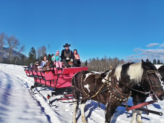 Sunshine and blue skies for this winter sleigh ride.