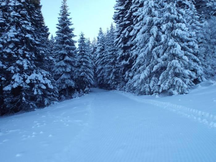 Skiing, Cottonwood Butte. Photo Credit: Ski Idaho