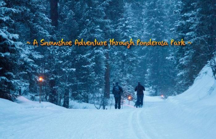 Snowshoe Adventure in Ponderosa State Park