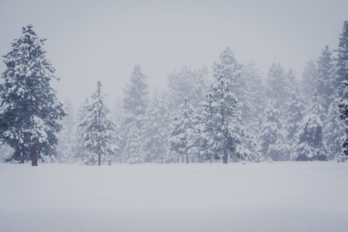 Ponderosa State Park in the winter.