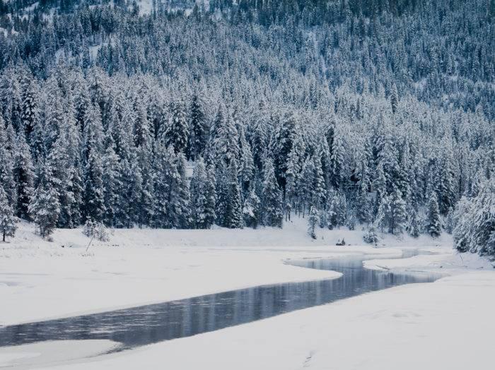Idaho youth outdoors annual youth ice fishing day visit for Ice fishing idaho
