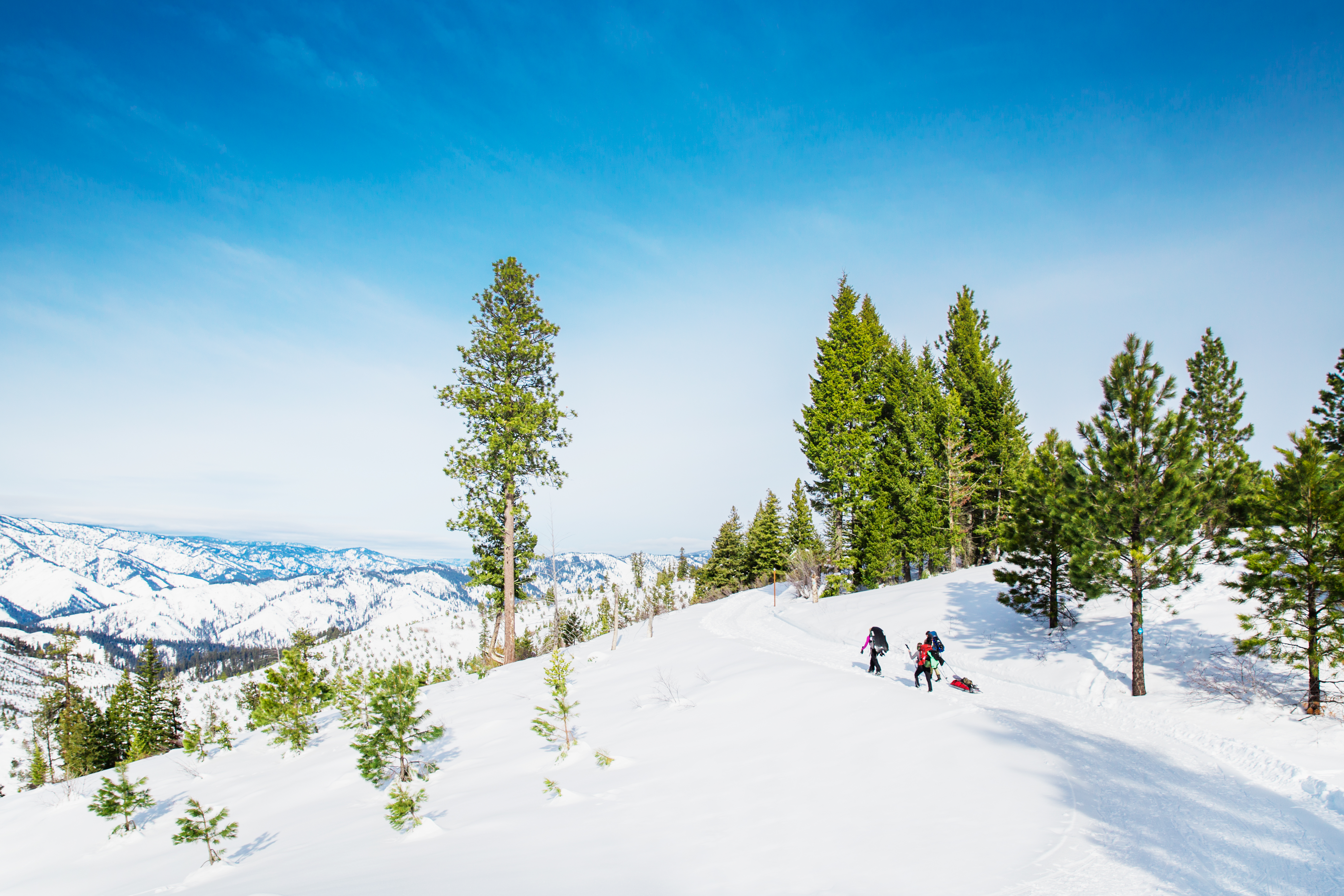 Two people snowshoeing.