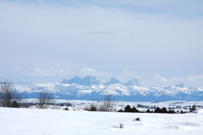 The views of the Tetons are pretty spectacular.
