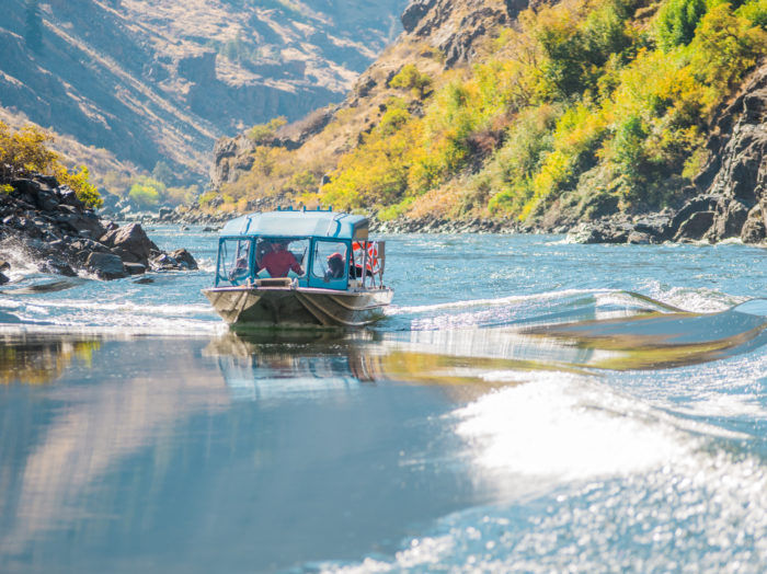 Jetboating in Hells Canyon.