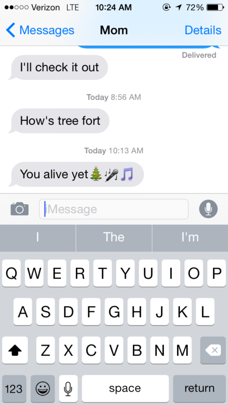 A text from my mom asking if I am having fun at Treefort