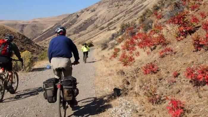 cyclists biking in a canyon