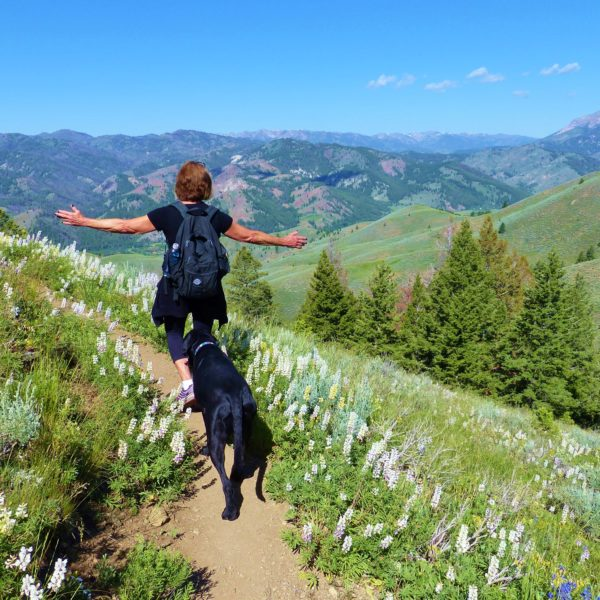 10 Great Dog-Friendly Hiking Trails in Sun Valley
