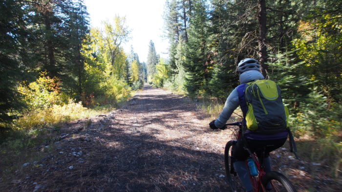 cyclist in forested area
