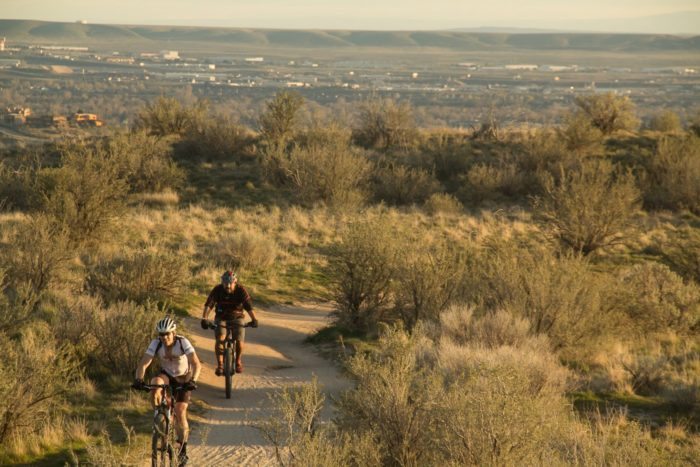 Two mountain bikers on a foothills trail.
