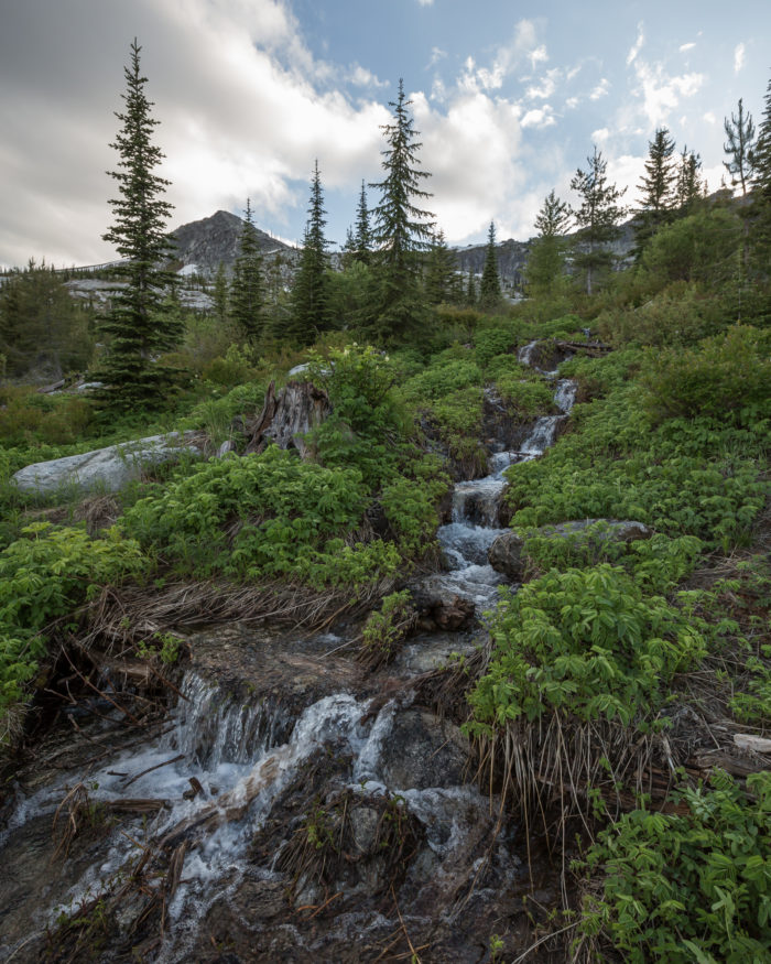 A waterfall on a dense mountainside.