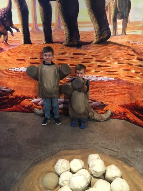 Two boys standing in front of dinosaur eggs.