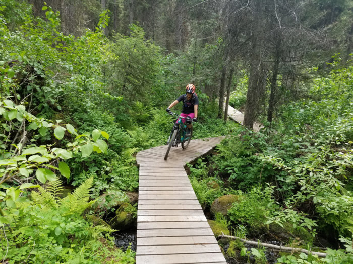 Cyclist riding on wooden boardwalk in a forest.