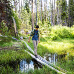 Traversing through the meadows along Fishhook Creek Trail near Redfish Lake. Photo Credit: Idaho Tourism