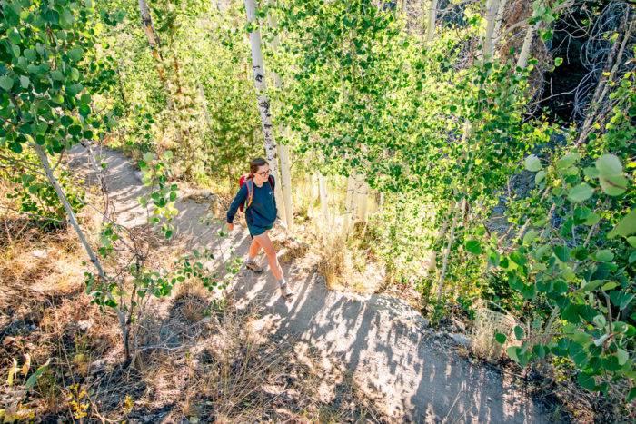 woman hiking on path along aspen trees