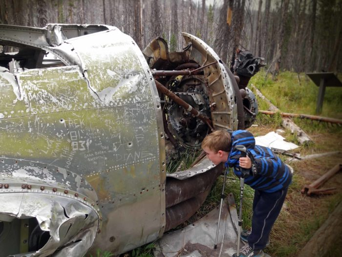 child looking at body of old crashed plane in pine forest