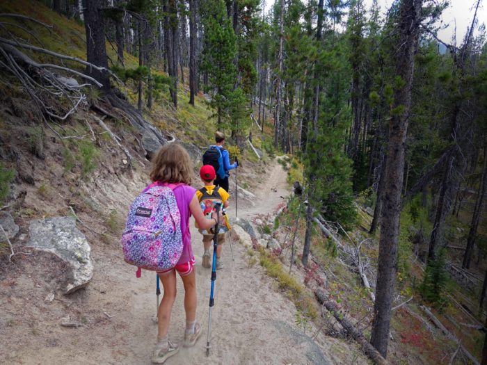 family hiking on a trail in pine forest