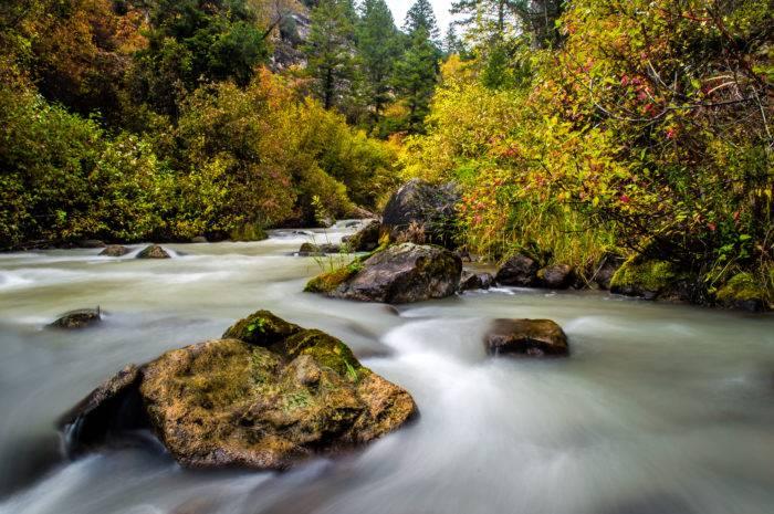 fall colors surrounding river