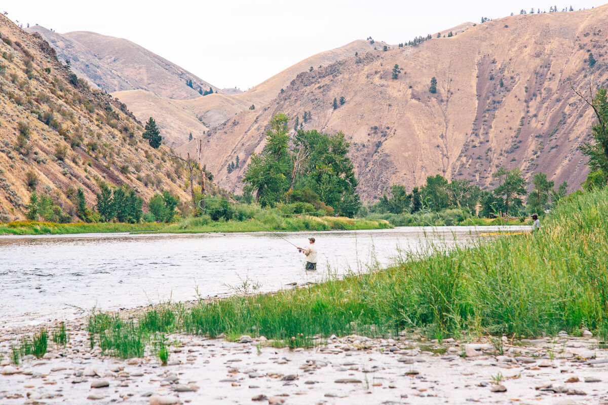 An idaho fly fishing lesson a recipe for your catch for Fly fishing idaho