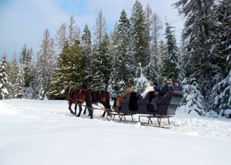 snowy sleigh ride