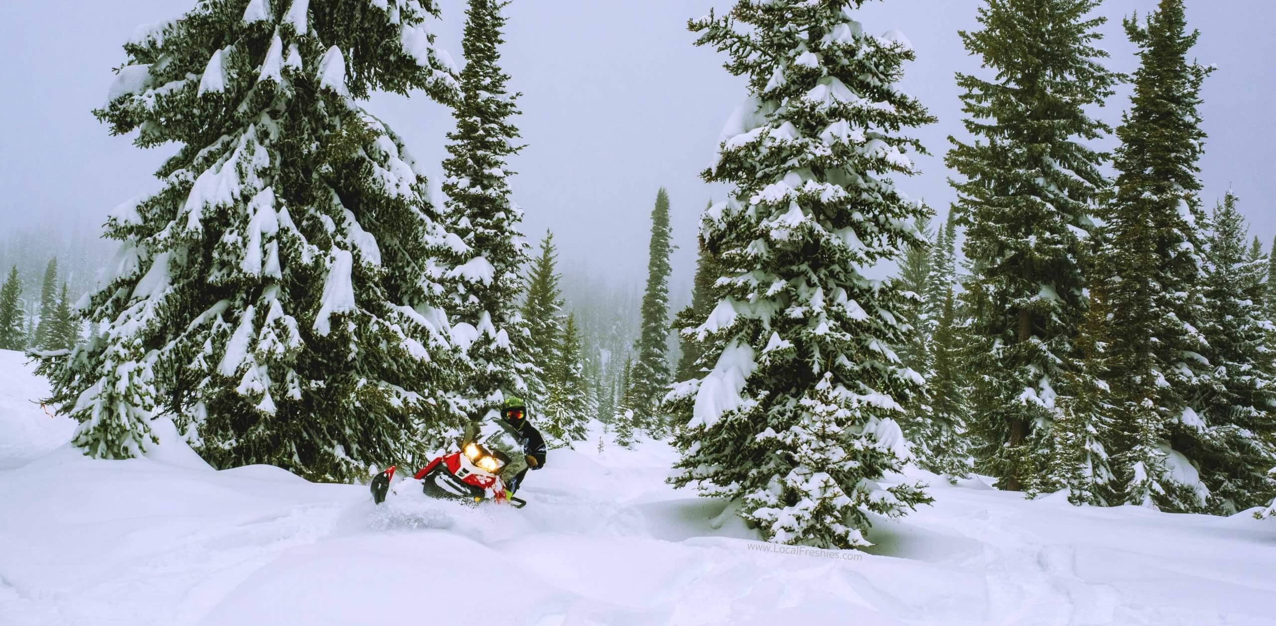 SNOMMOBILER ON SNOWY MOUNTAIN