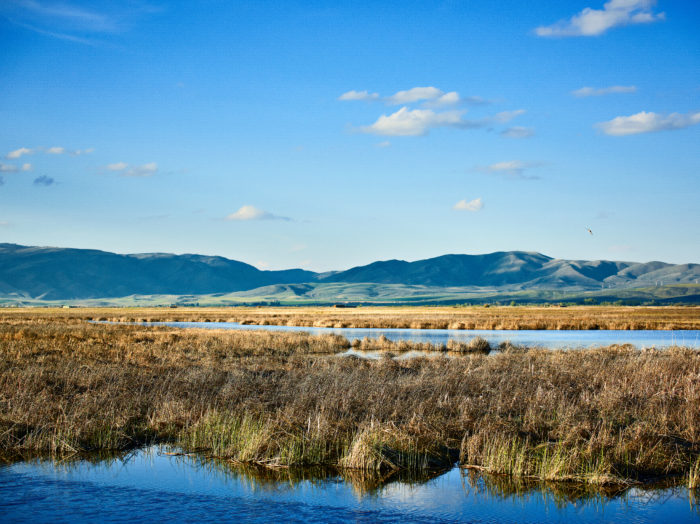 Bear Lake State Park, St. Charles. Photo Credit: Idaho Tourism