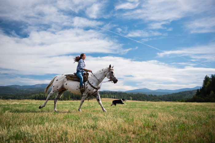 woman riding horse in open mountain field with dog running along side