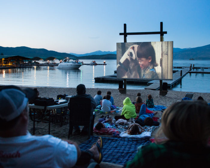 outdoor movie screen on the beach at a lake