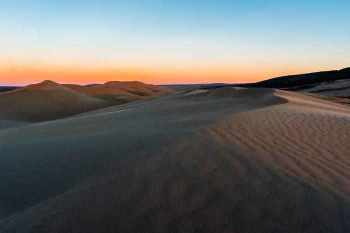 morning light on sand dunes