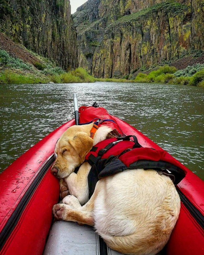 Owyhee River, Idaho. #VisitIdaho Share: @gus_riggins