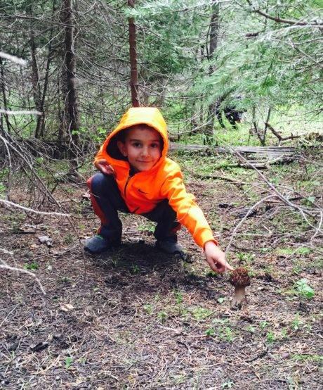 child pointing at morel mushroom
