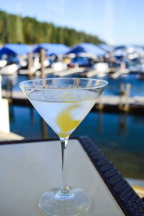 martini glass with lake in background