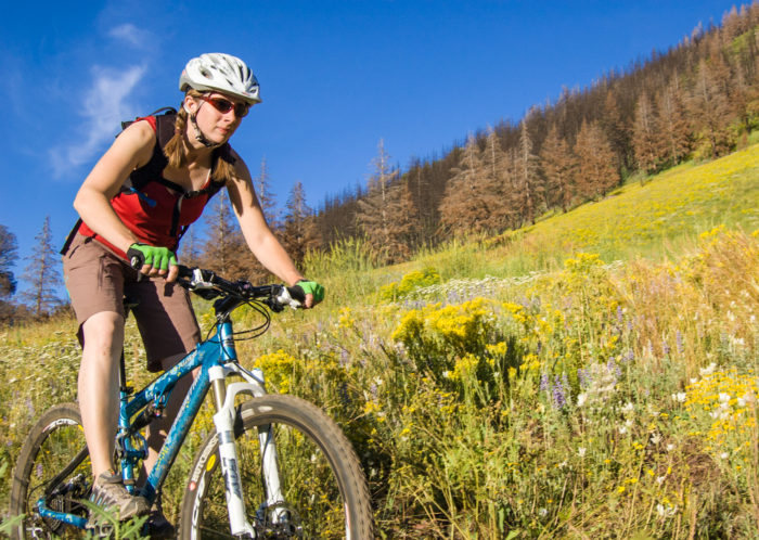 mountain biker riding alongside wildflowers.