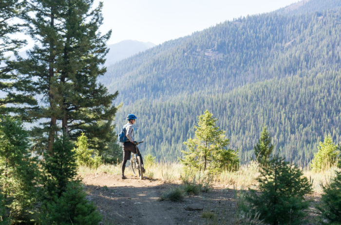 MOUNTAIN BIKER LOOKING OVER FOREST.