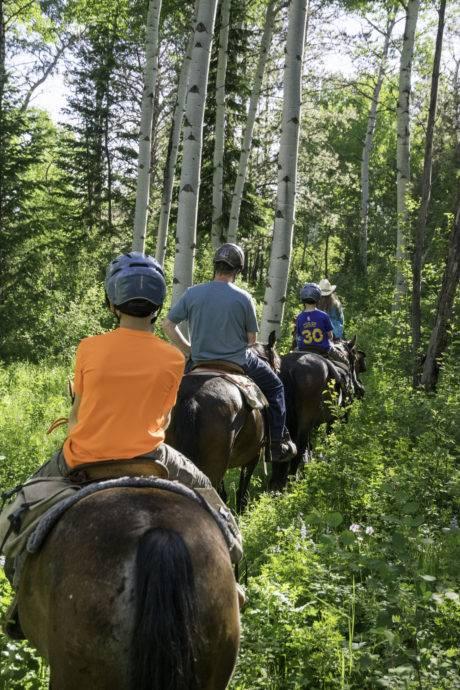 family horseback riding through aspen trees
