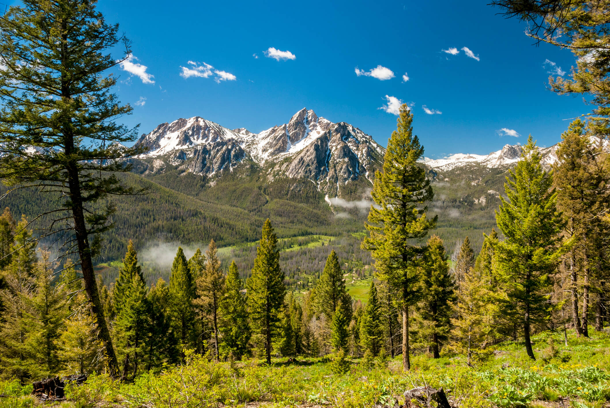 The views of the Sawtooths never get old.