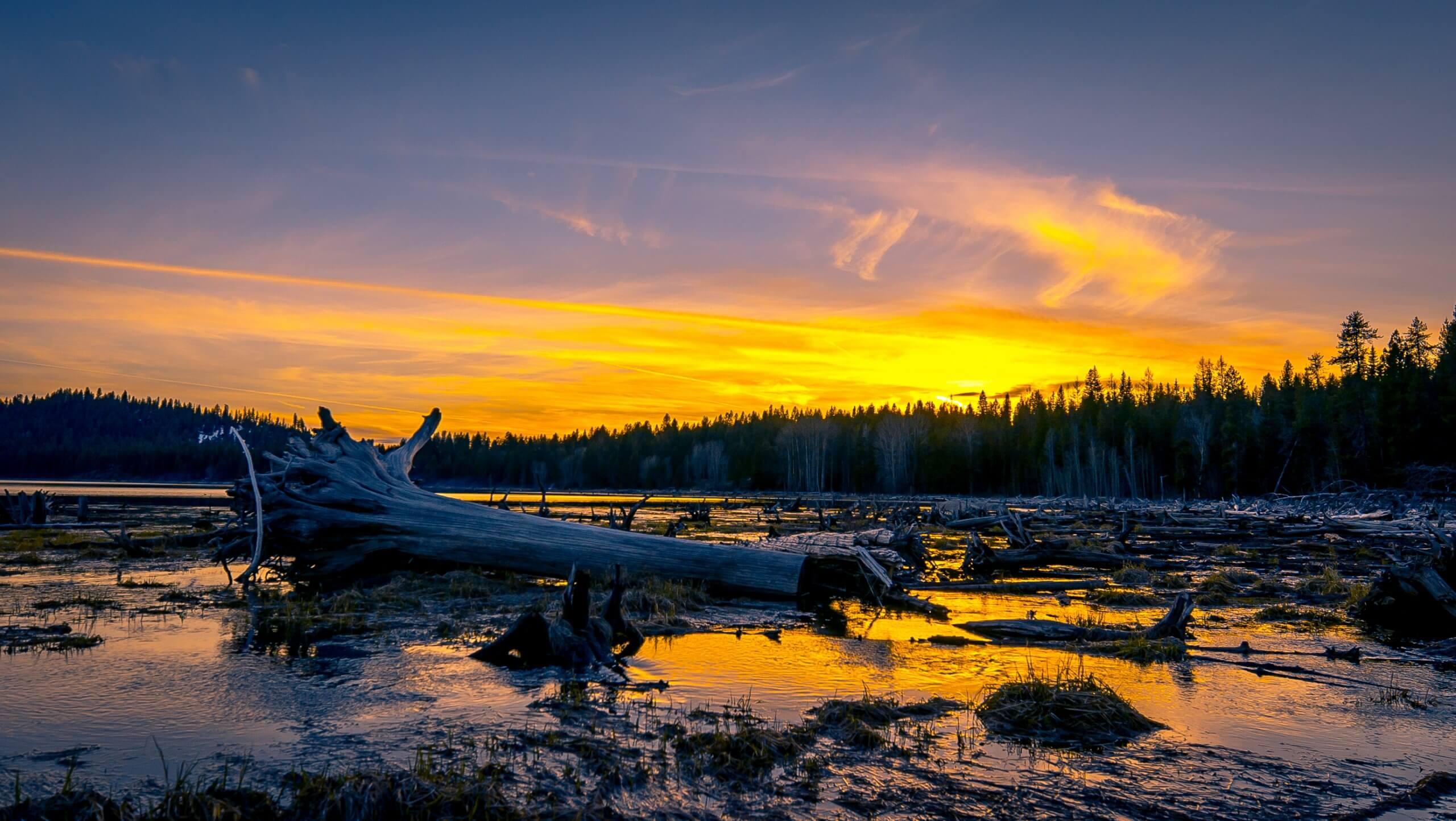 Little Payette Lake, McCall. Photo Credit: Idaho Tourism
