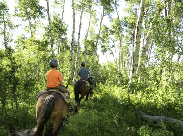 Horseback riding on a trail near Linn Canyon Ranch. Photo Credit: Christina McEvoy.