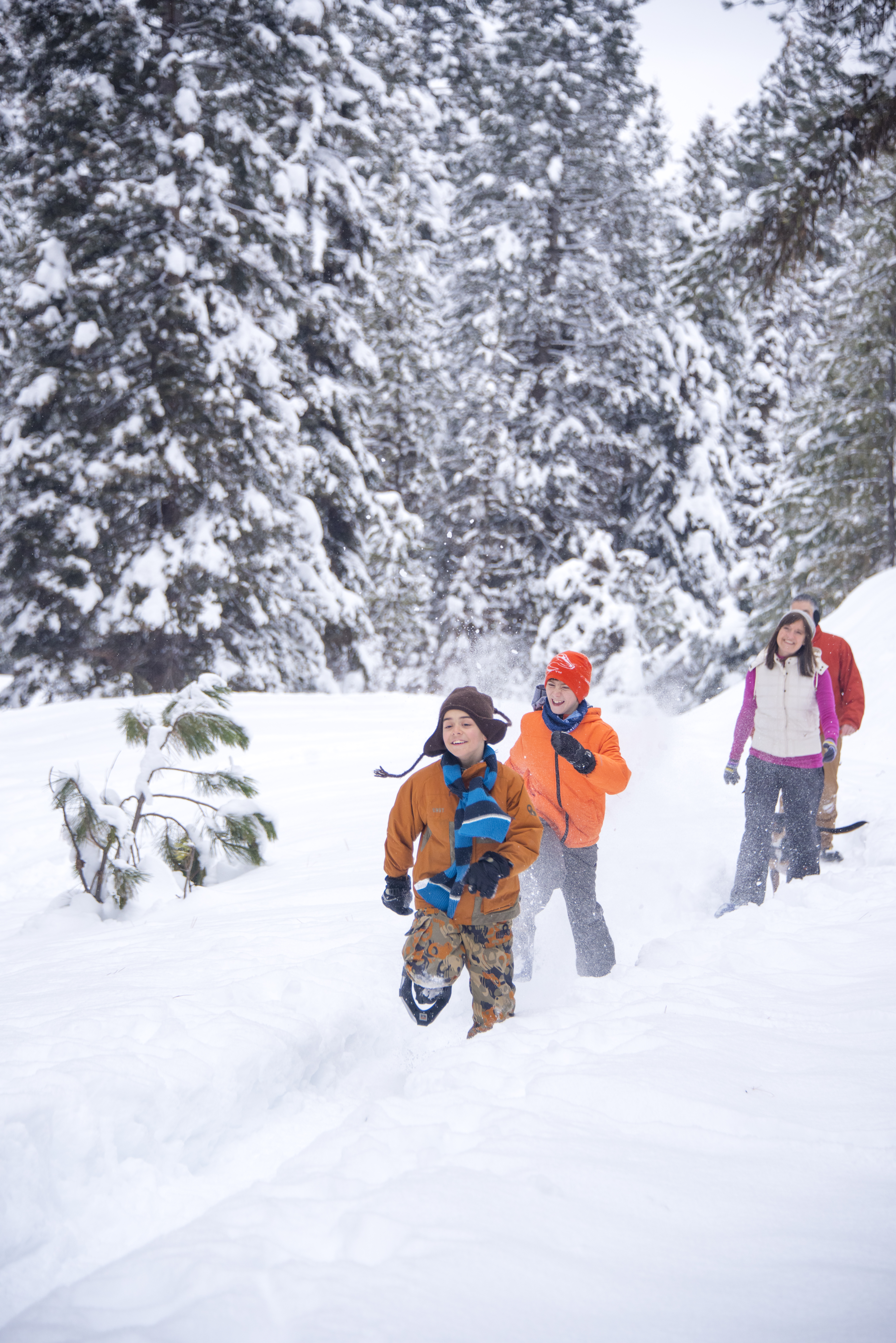 Snowshoeing, McCall. Photo Credit: Idaho Tourism.