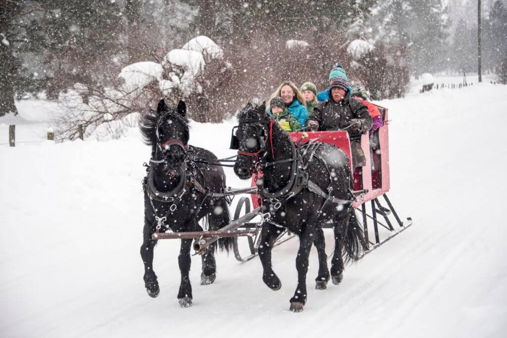 family enjoying a snowy sleigh ride