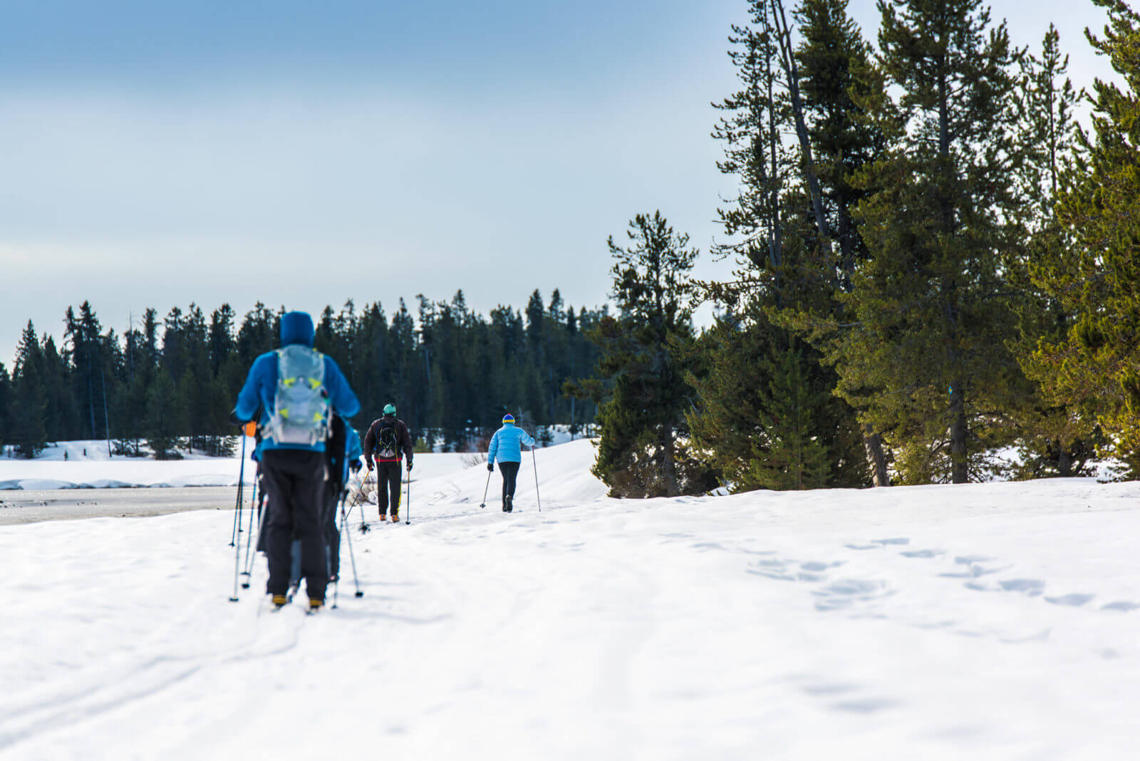 Cross-Country Skiing, Harriman State Park. Photo Credit: Idaho Tourism