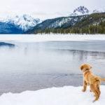 Redfish Lake, Stanley. Photo Credit: Idaho Tourism