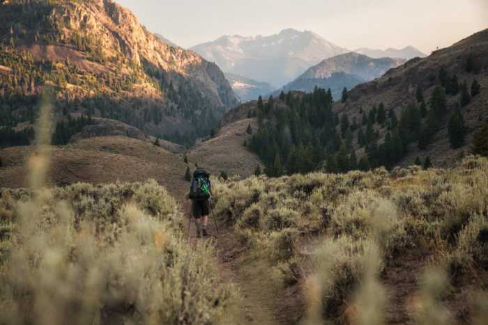 hikers on trail surrounded by sagebrush